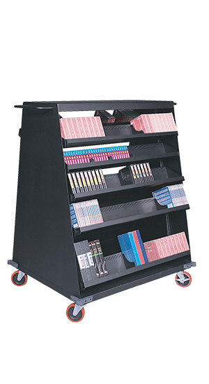 Double-Sided Multimedia Mobile Cart